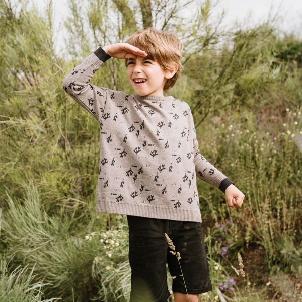 Jersey de lana estampado para niños color gris y marino