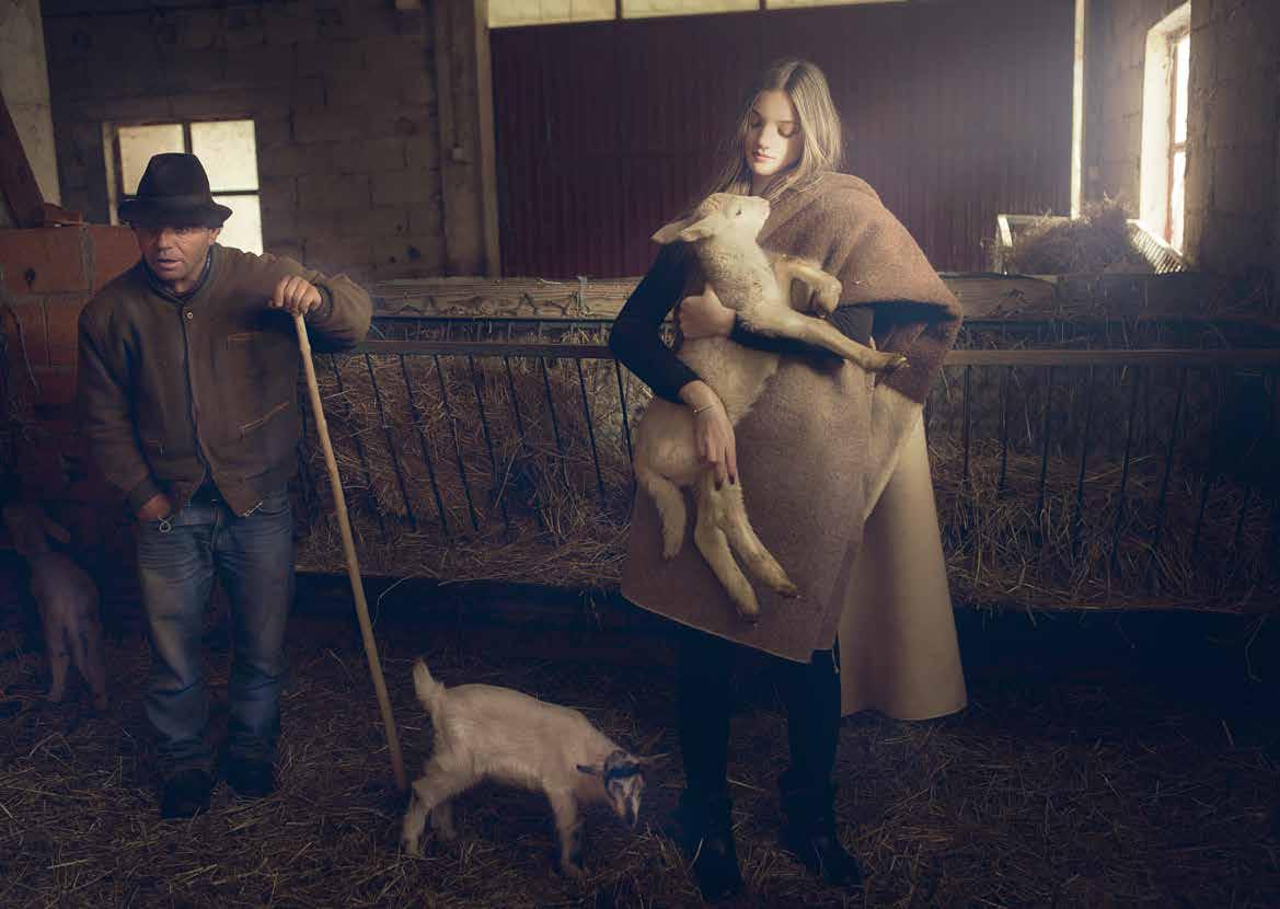 Fábrica de lana de oveja bordaleira