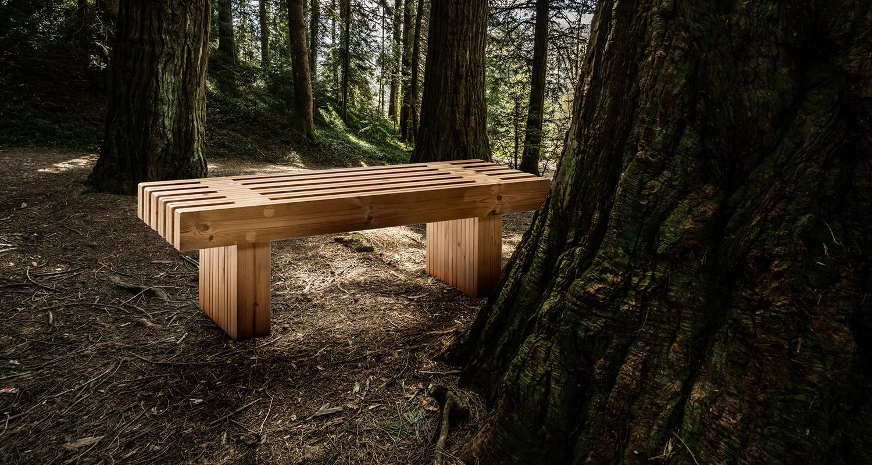 Banco de madera Sintala en fondo de bosque