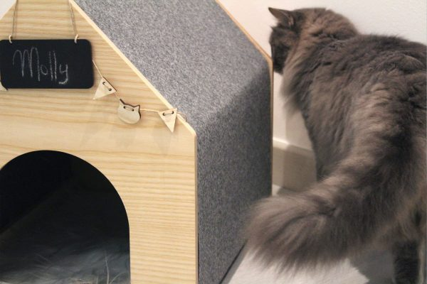 Casa de diseño para gatos