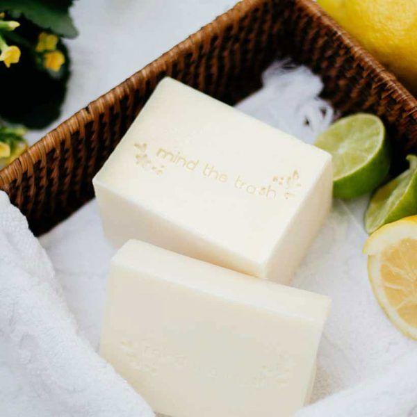 Lavavajillas ecológico sólido menta y limón