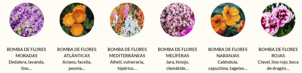 Variedades de semillas de flores